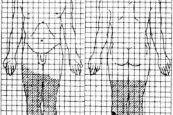 Схема Вилявина