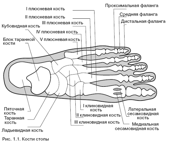 Боль в ногах при геморрое - причины и быстрые способы устранения