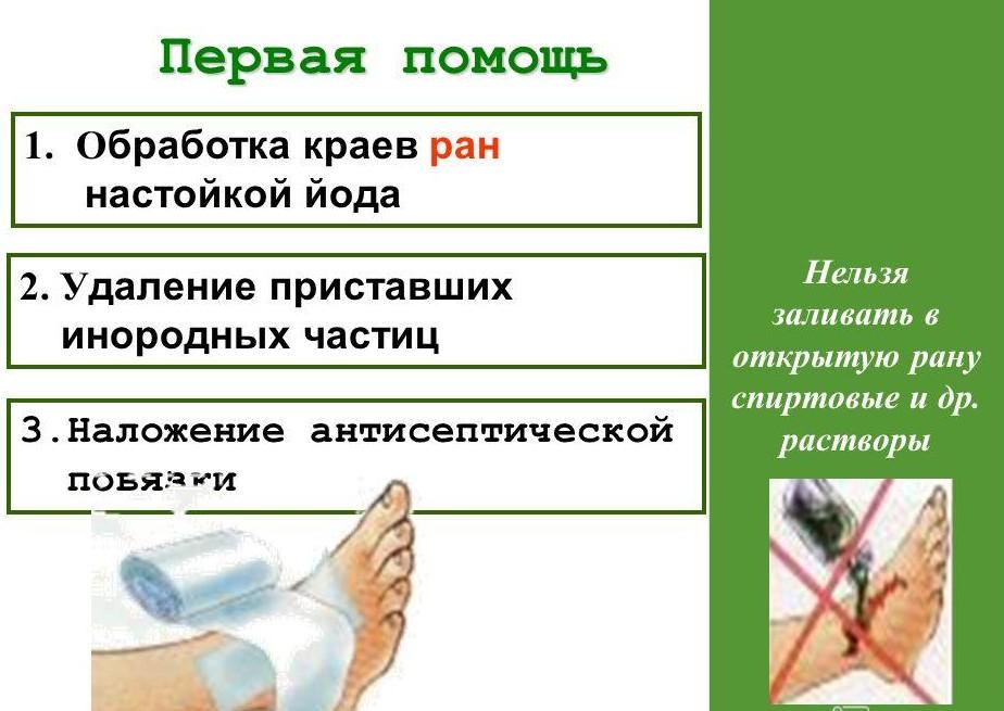 Чем обработать открытую рану в домашних условиях 677